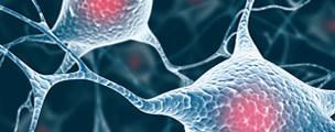 terapia regenera capilar